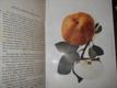 Moravské ovoce